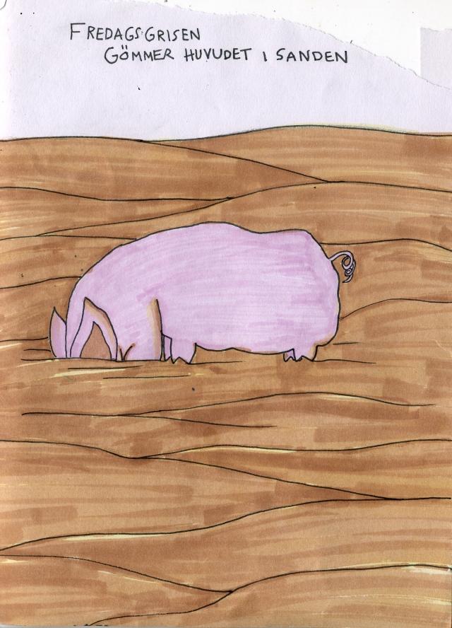Fredagsgrisen gömmer huvudet i sanden